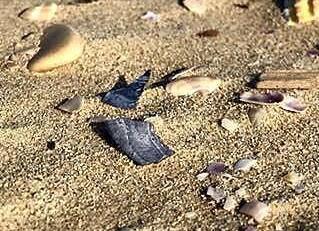 Giulianova Lido, typická pláž s jemným pískem a škebličkami