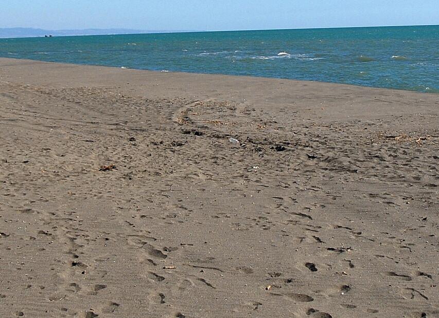 """Marina di Pescia Romana, kilometry prázdné pláže směrem """"dolů"""", k Římu"""