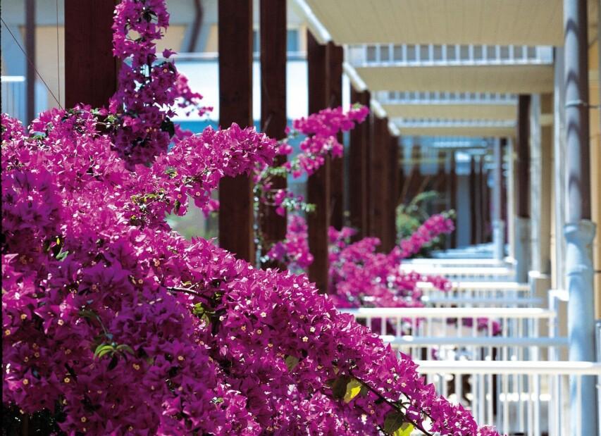 Green Park Resort****S