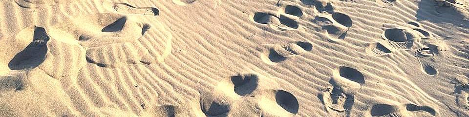 Rosolina Mare, typ pláže s jemným pískem