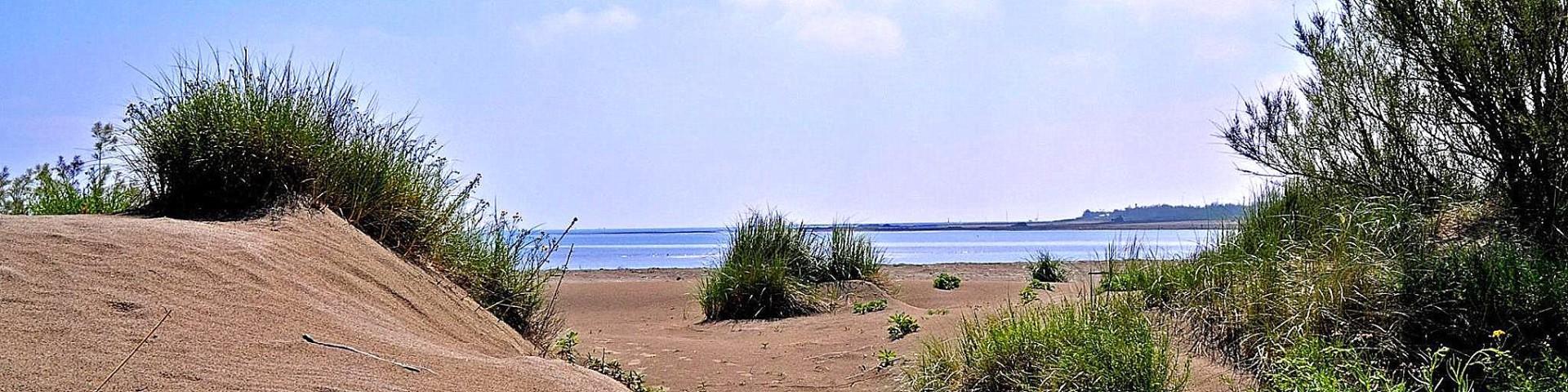 Rosolina Mare, v jižní části jsou kilometry opuštěných přírodních pláží