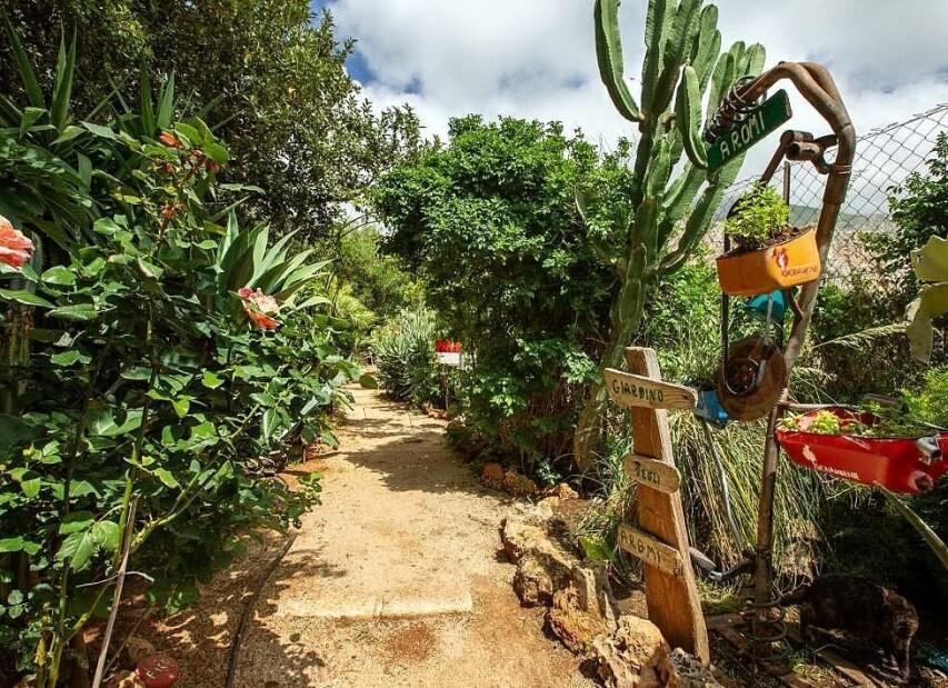 botanická zahrada 3.jpg
