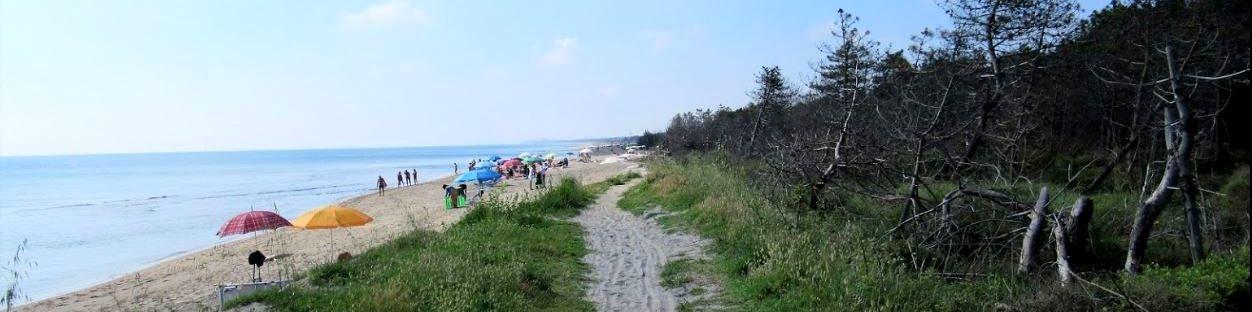 volná pláž La Bassona