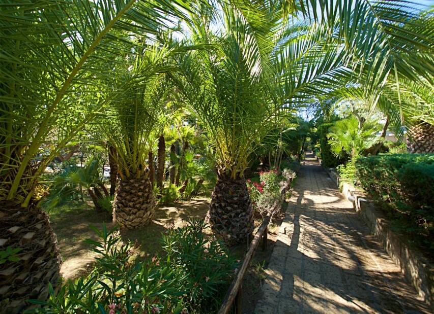 Residence Park Solemaremma