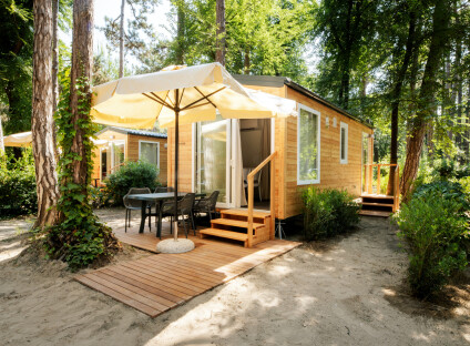 mobilhome typ WOOD